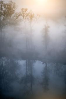 濃い霧に隠れる川沿いの秋の木々