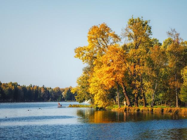 池のほとりにある秋の木々。黄色の木々と朝秋の風景。ガッチナ。ロシア。