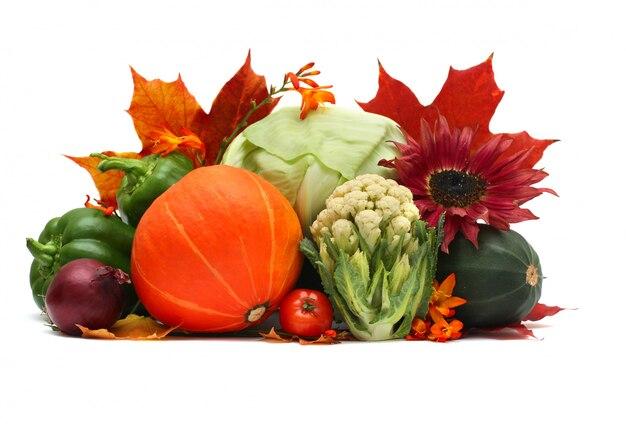 Осенние овощи на белом изолированные