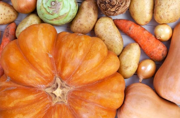 白の秋野菜