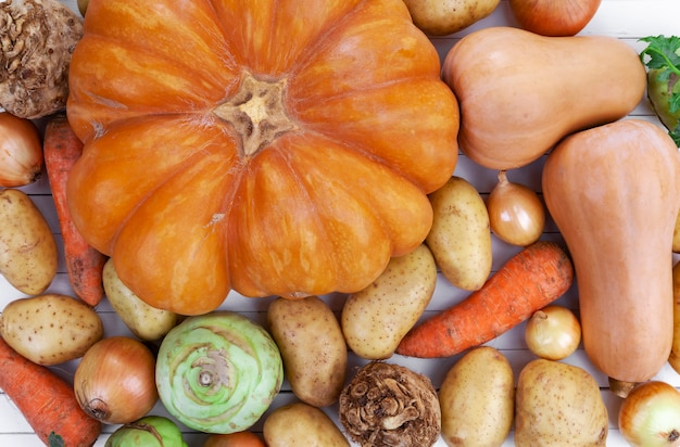 Autumn vegetables on white wooden table background, top view