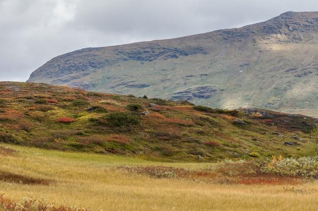 Autumn view of sarek national park, lapland, norrbotten county