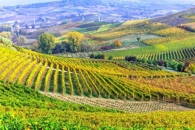 Осенние виноградники тосканы, знаменитого винодельческого региона италии