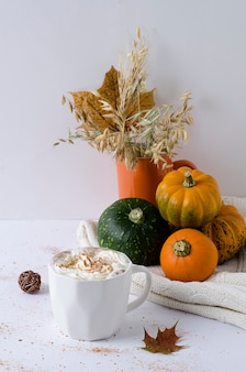 Autumn warm coffee with cream and cinnamon in a white cup and pumpkins on a knitted light blanket
