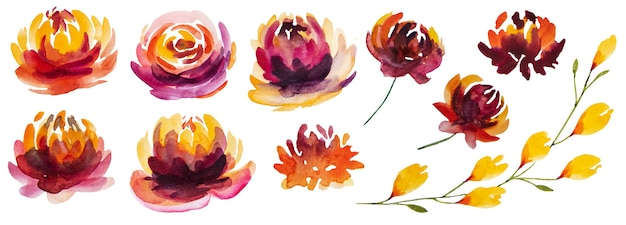 Autumn watercolor collection with yellow, orange and red flowers isolated set