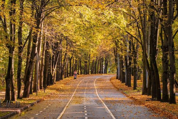乳母車を持って歩く母親のシルエットの秋の曲がりくねった路地。モスクワ。