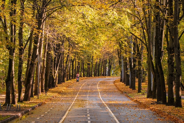 Autumn winding alley with a silhouette of a walking mother with a baby carriage. moscow.
