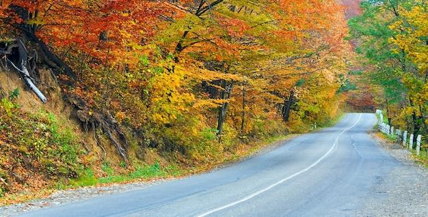 Осенняя извилистая второстепенная дорога в горном лесу