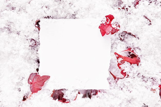 Autumn or winter frame composition with paper mockup. background with red leaves and snow. minimal