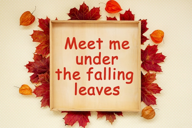 Autumn wood frame with text meet me under the falling leaves on wooden board