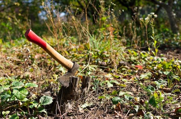 庭での秋の仕事、切り株で立ち往生している斧、斧で庭の木を切り倒す