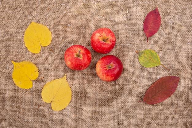 Осенние желтые и красные листья ягод, ягод, орехов, опадают.