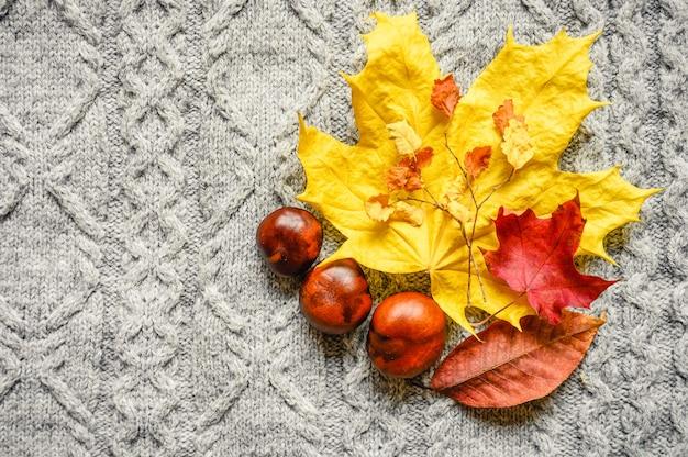 Осенние желто-красные листья клена и вишни, а также три каштана расположены на фоне серого уютного вязаного свитера или пледа с рисунком косичка. концепция падения