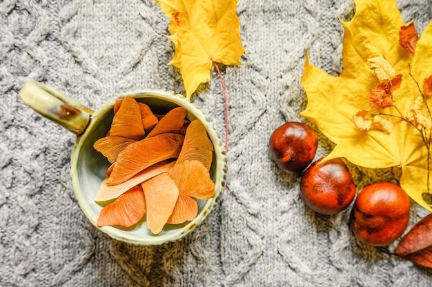 Осенние желто-красные листья клена и вишни, три каштана и чашка с кленовыми семечками внутри расположены на фоне серого уютного вязаного свитера или пледа с узором косичка.