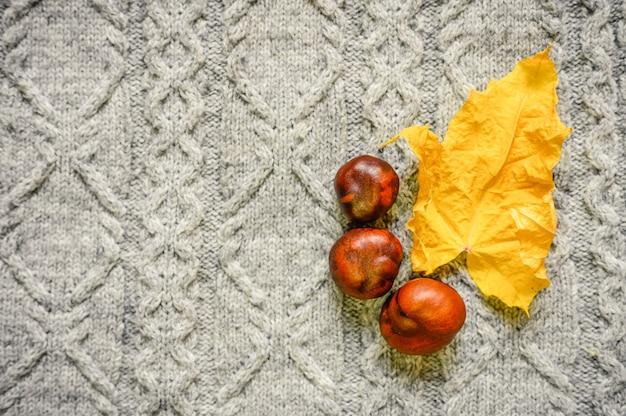 Осенний желтый сухой кленовый лист и красные каштаны на фоне уютного серого вязаного свитера. концепция падения