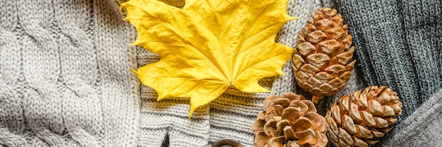 Autumn yellow leaf and three pine cones on the background of knitted sweaters in gray shades. banner