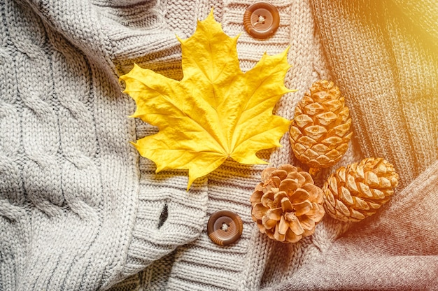 Autumn yellow leaf and three pine cones on the background of knitted sweaters in gray shades. flare
