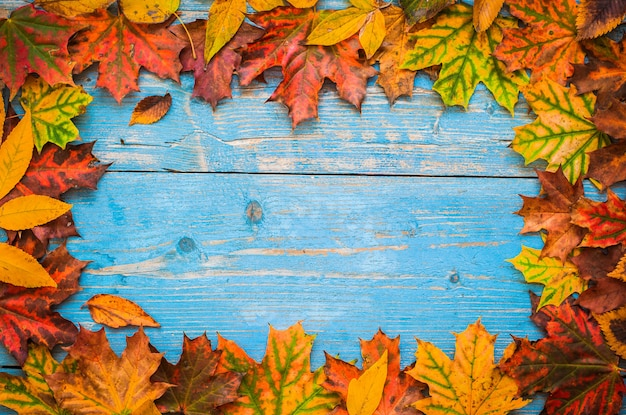 Autumn yellow leaves on old blue wooden.