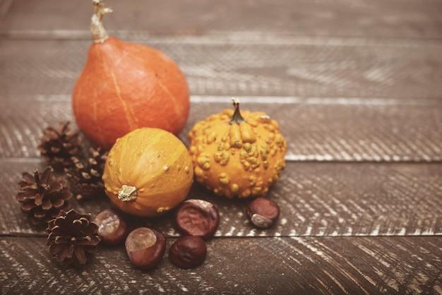 Composizione autunnale di zucche, castagne e pini