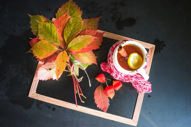 Autumnal concept with bright red leaves