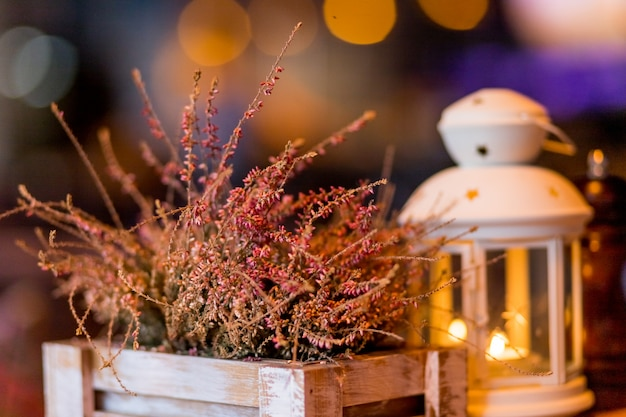 Autumnal decorated terrace. seasonal decoration with heather flower. white lantern and heath plants in white wooden box. autumn arrangement with burning candle.