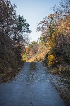 Autumnal landscape of kartli region