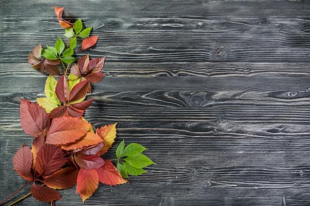 Осенние листья на деревянных досках