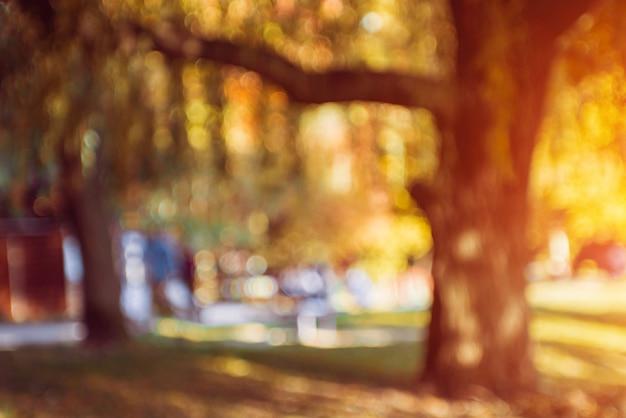 秋の公園。背景をぼかした写真。明るくカラフルなボケ味。