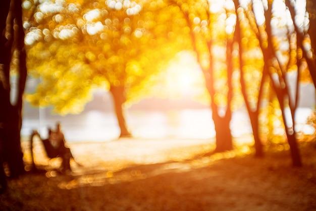 秋の公園。背景をぼかした写真。明るくカラフルなボケ。