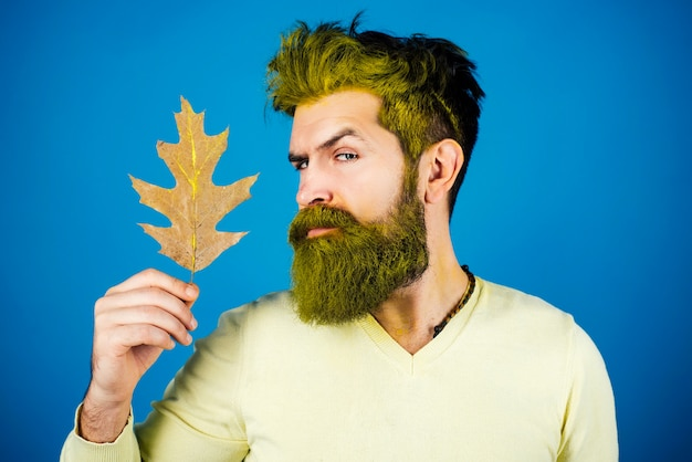 Autumnal vogue trend. autumn man. fashion autumn man portrait with yellow maple leaves on isolated background.