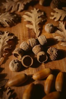 秋の壁。選択的な焦点を持ったオークの葉とドングリ。落ちたオークの葉のクローズアップビュー。