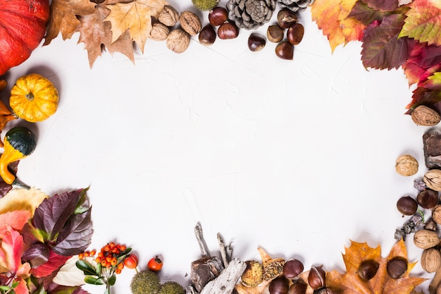 Autumnal white background with oval frame