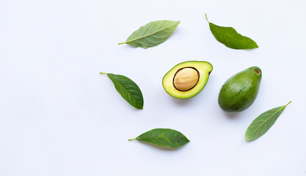 Avocado with green leaves on a white
