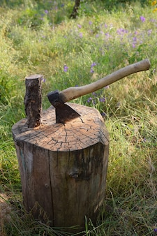 The ax is driven into a wooden deck, and there is also a log on the deck