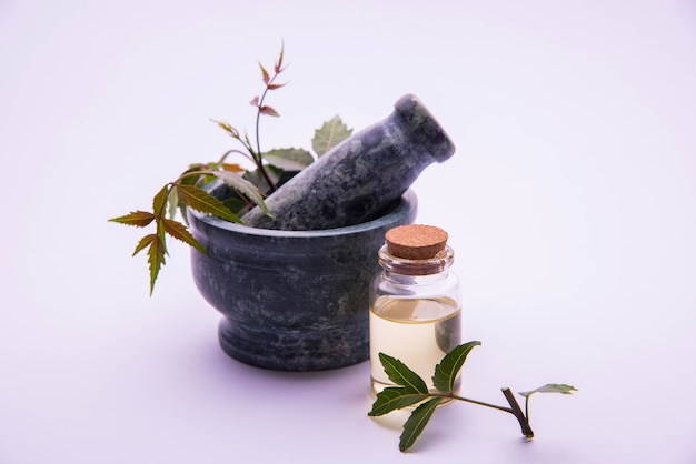 Аюрведические антибактериальные травы ним или сирени или azadirachta indica с маслом в бутылке со ступкой, изолированные на простом фоне, выборочный фокус