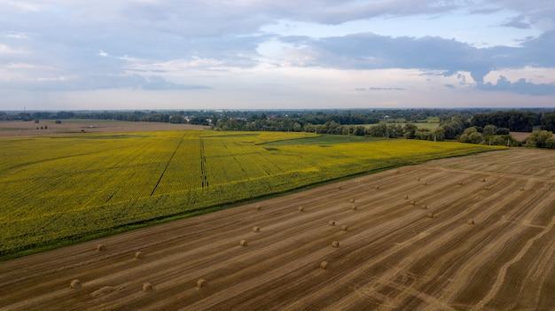 空撮、収穫後のわらbaと麦畑。ひまわりの収穫。小さな田舎町の風景
