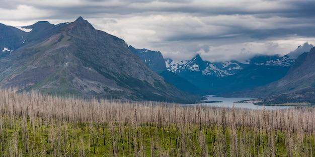 バックグラウンド、babb、going-to-the-sun道路、氷河国立公園、glaの山脈のある樹木