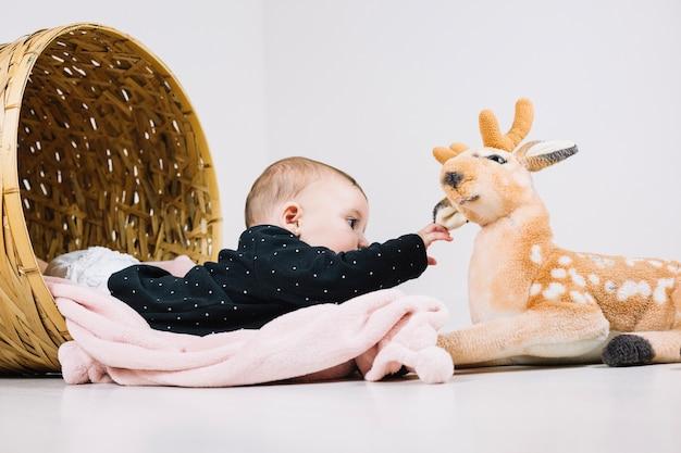 Baby in basket touching plush deer