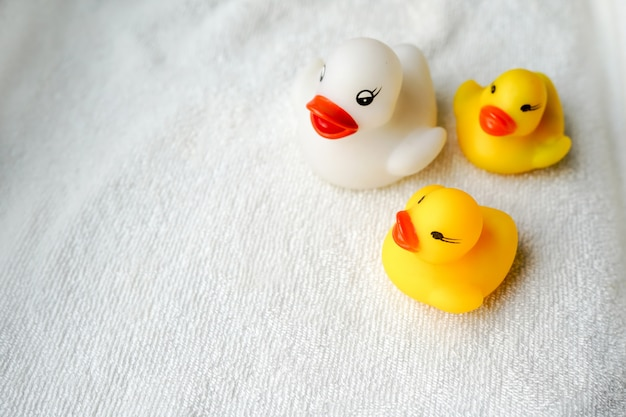 Baby bath toys white and yellow ducks on towel