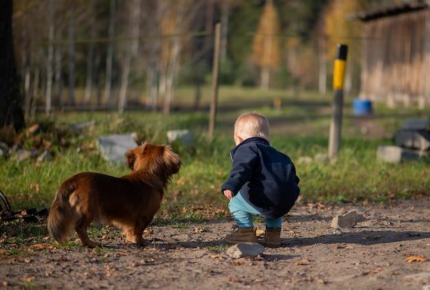 Ребенок мальчик ребенок ребенок и милая собака на открытом воздухе