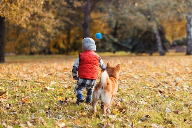 秋の公園の芝生の上で彼の赤い犬と遊んでいる男の子。柴犬の子犬と子供は親友、幸せとのんきな子供時代のコンセプトです