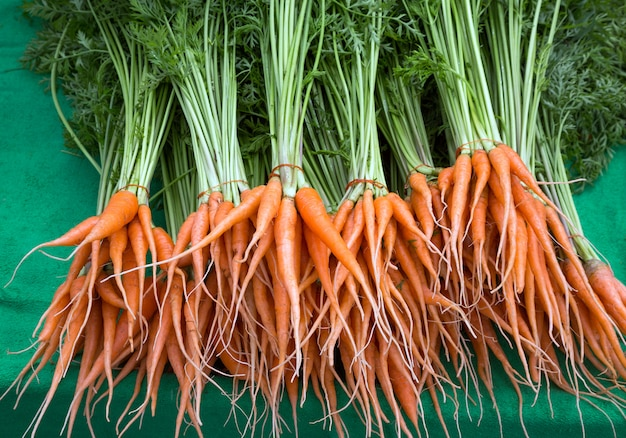 Baby carrots, fruits and vegetables, herbs useful for health and body.