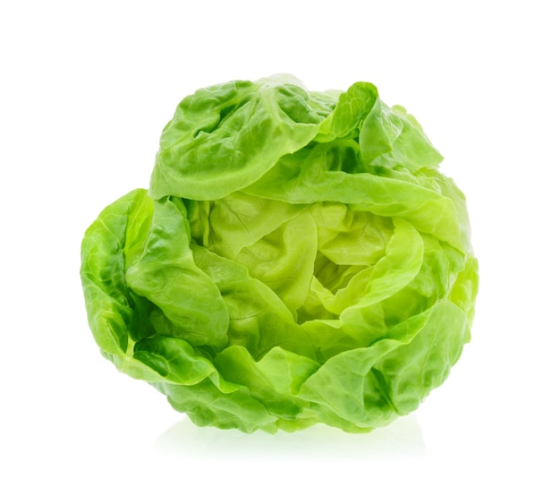 Baby cos (lettuce) on white background