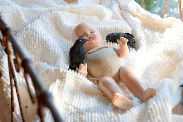Baby doll with two blackbirds
