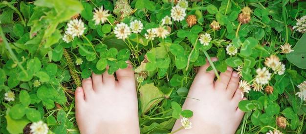 Baby feet barefoot on green grass