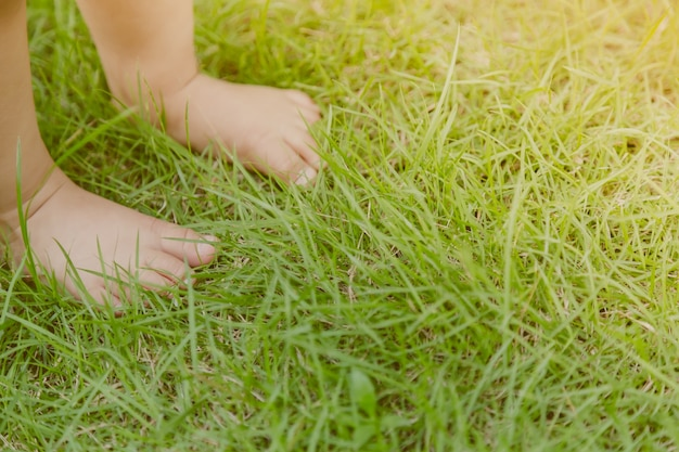 Baby feet on the lawn