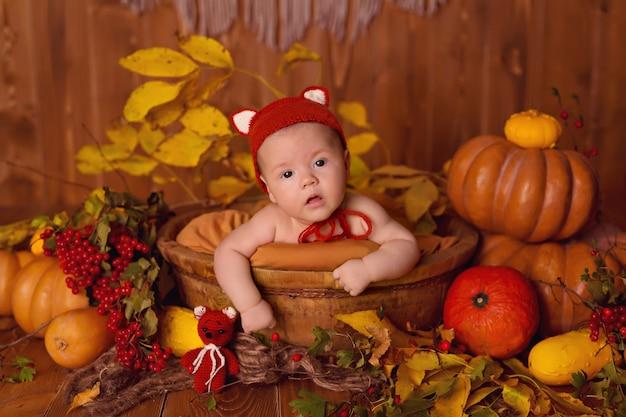カボチャ、果実、葉の感謝祭やハロウィーンの秋の装飾の女の赤ちゃんキツネ