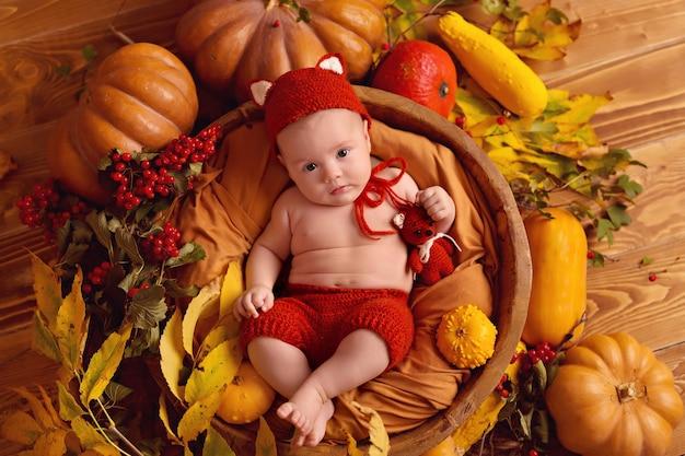 Лисенок в осеннем декоре с тыквами, ягодами и листьями на день благодарения или хэллоуин