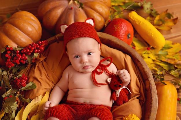感謝祭やハロウィーンのためのカボチャ、ベリー、葉と秋の装飾の女の赤ちゃんキツネ