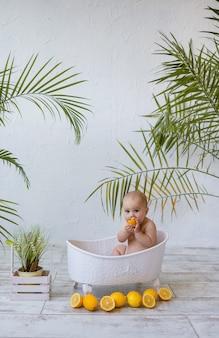 여자 아기는 세라믹 욕조에 앉아 식물이 있는 흰색 배경에 레몬을 먹고 있습니다